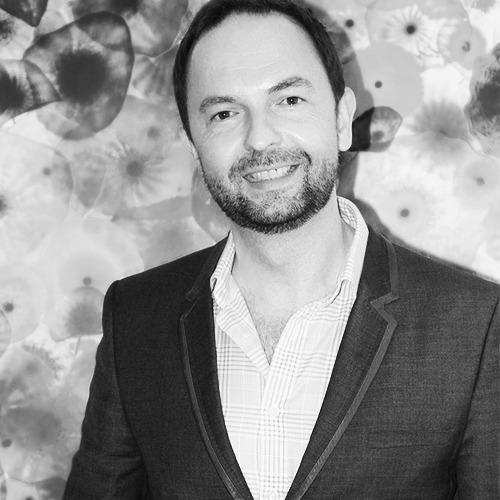 David Harris Media Finance Consultant